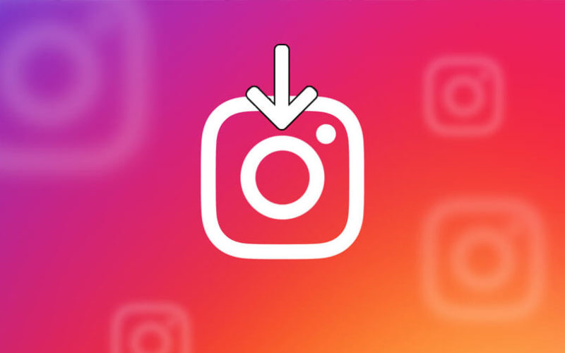 How to Use Instaneek To Download Instagram Photos?